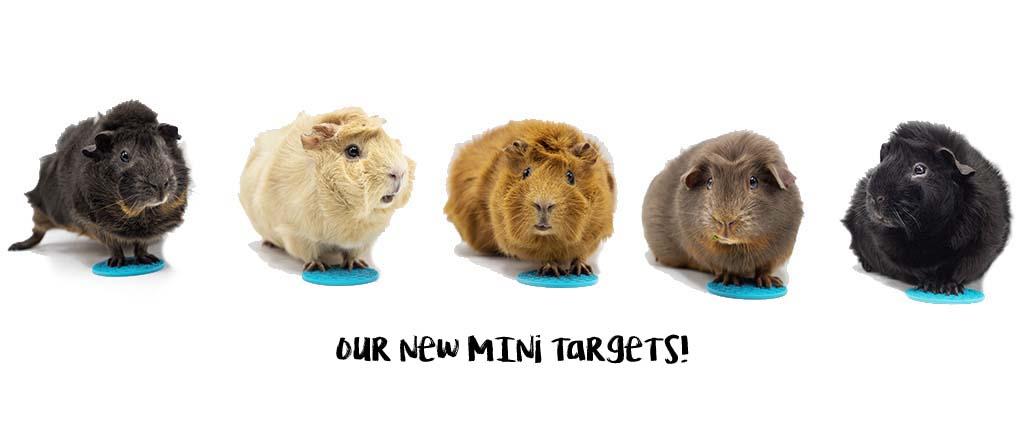 Melli4Dogs mini targets en