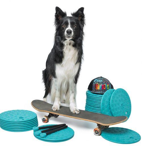 Ayden auf Skateboard