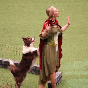 Dogdance Seminar am 09./10.10.21 in Hoisdorf
